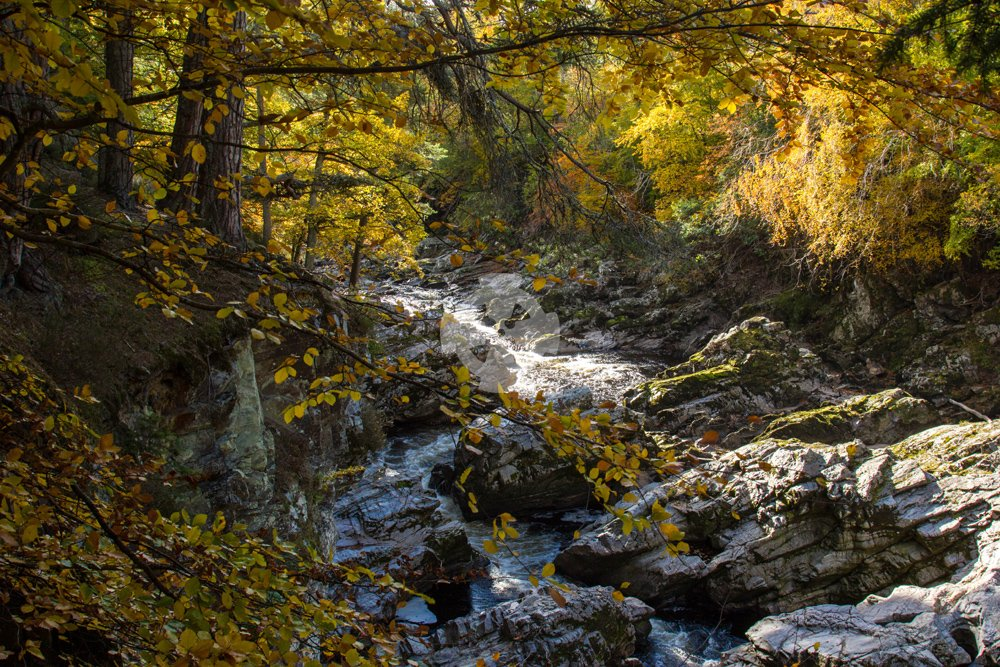 Photo showing the Findhorn river at Randolph's leap, in autumn colours
